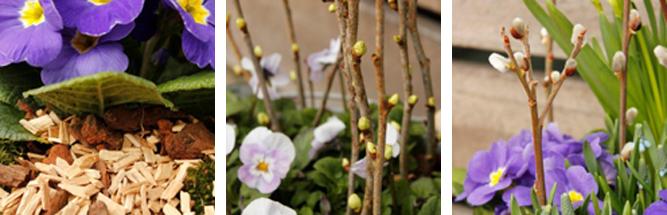 Forår i krukker og spande   home & garden