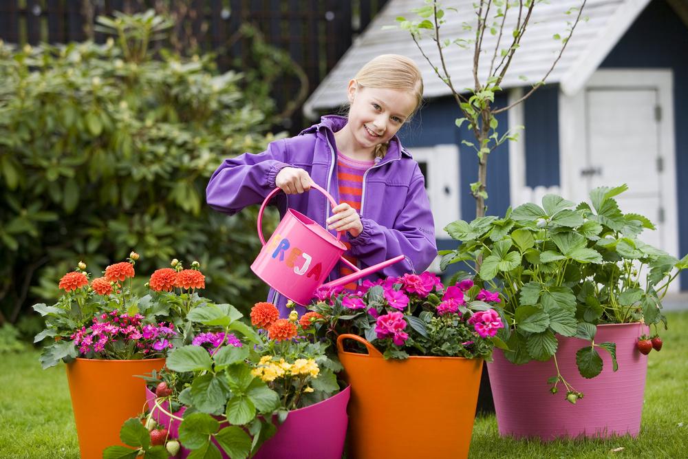 Krukker til hele sommerens fryd - Home & Garden